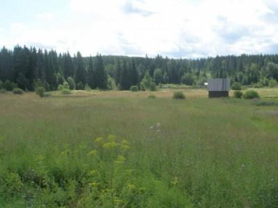 Продажа недвижимости в Зеленоградском